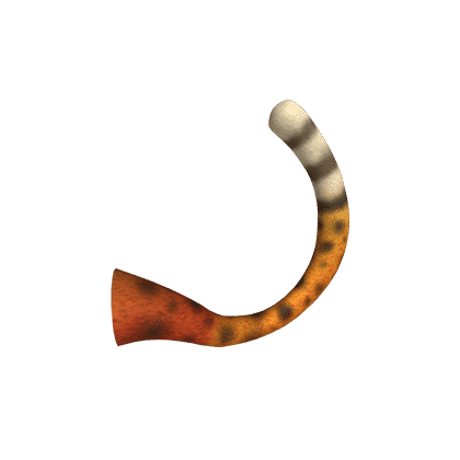 Savannah Cat Tail
